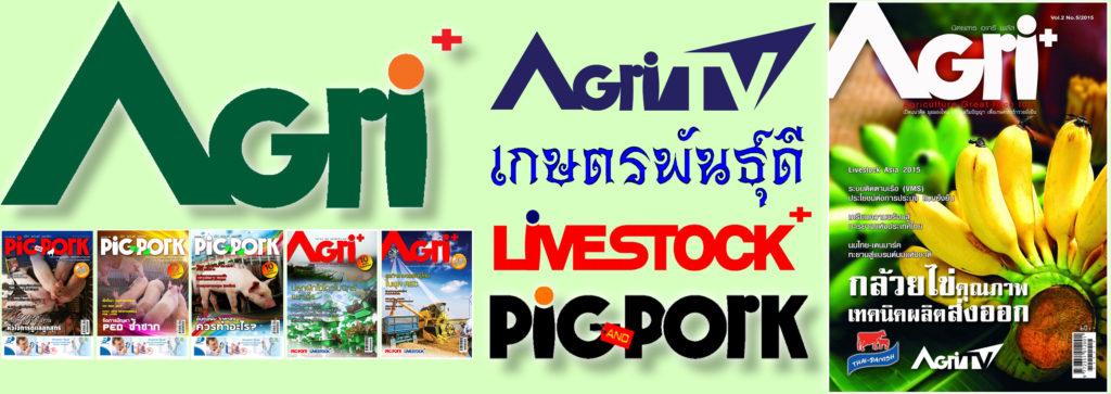 Lifestyle ข่าวเกษตรอัพเดทก่อนใคร เกษตรพันธุ์ดี อะกรีพลัสนิวส์ www.agriplusnews.com We provide agricultural business think your ideas. Thai Agriculture is the world's Kitchen.