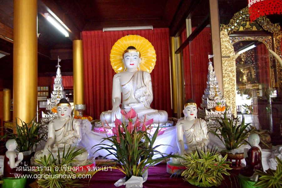 พระพุทธรูปหินขาว วัดนันตาราม วัดไม้สักทองศิลปะไทยใหญ่ แหล่งท่องเที่ยวเชียงคำ พะเยา