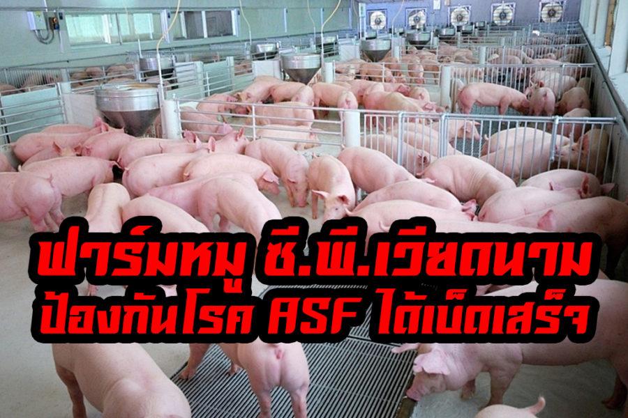 ฟาร์มหมู ซี.พี.เวียดนาม ป้องกันโรค ASF ได้ อย่างเบ็ดเสร็จ